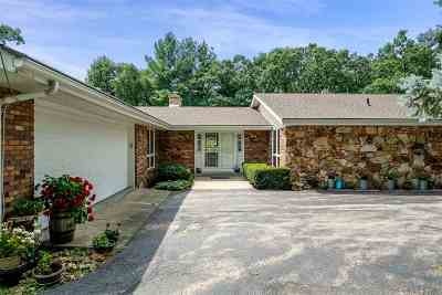 Ogle County Single Family Home For Sale: 916 Town Line Road