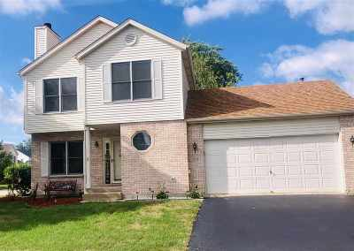 Belvidere Single Family Home For Sale: 1651 Fox Field Drive