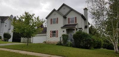 Boone County, Ogle County, Stephenson County, Winnebago County Single Family Home For Sale: 3737 Gina Terrace