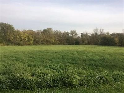 Cedar Lake IN Residential Lots & Land For Sale: $60,000