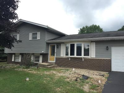 Single Family Home For Sale: 3888 South Wayne Drive