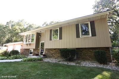 La Porte, Laporte Single Family Home For Sale: 3801 North 525 West