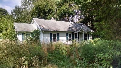 New Carlisle Single Family Home For Sale: 29479 Edison Road