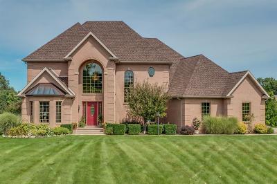 New Carlisle Single Family Home For Sale: 8173 East Walnut Ridge Drive