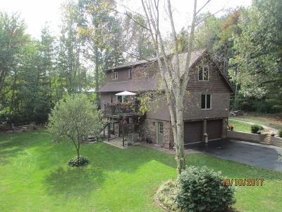 Westville Single Family Home For Sale: 11081 West Snyder Road