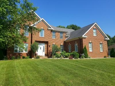 New Carlisle Single Family Home For Sale: 616 South Bray Street