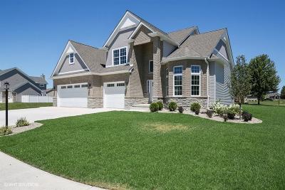 Schererville Single Family Home For Sale: 406 Anniston Lane