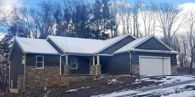 New Carlisle Single Family Home For Sale: 313 Tiger Court