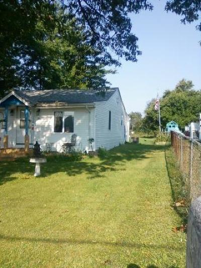Lowell Single Family Home For Sale: 144 W Lakeview Drive