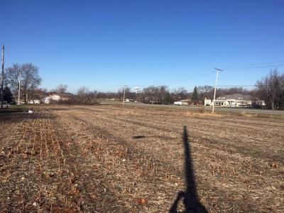 Schererville IN Residential Lots & Land For Sale: $250,000