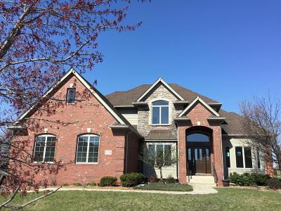 Schererville Single Family Home For Sale: 1120 Barrington Court