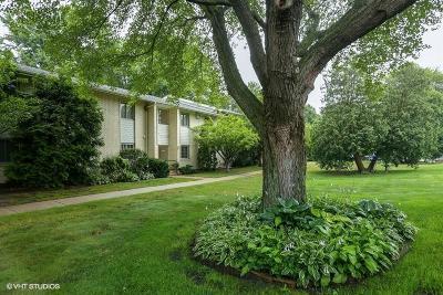 Michigan City Single Family Home For Sale: 413 Birch Tree Lane