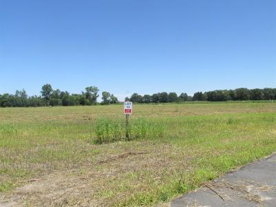 Demotte Residential Lots & Land For Sale: 6534 Blackthorn Drive