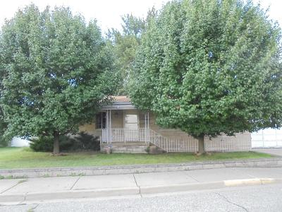 Michigan City Single Family Home For Sale: 119 Tillottson Avenue