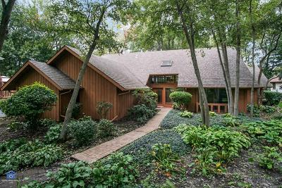 Schererville Single Family Home For Sale: 406 Wilderness Drive