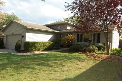 Schererville Single Family Home For Sale: 1001 70th Place