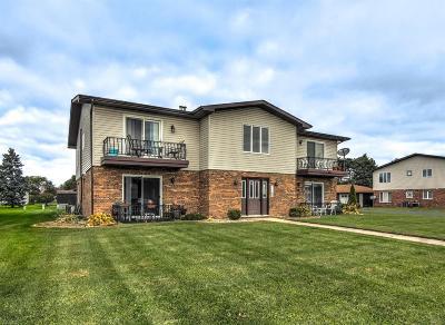 Schererville Single Family Home For Sale: 144 Plum Creek Drive