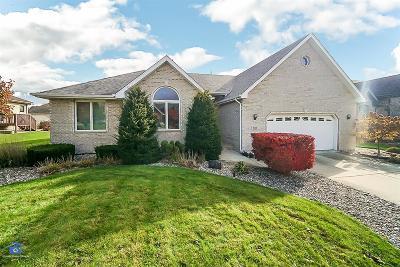 Schererville Single Family Home For Sale: 2821 Bristlecone Drive
