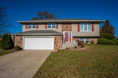 Schererville Single Family Home For Sale: 1766 Selo Drive