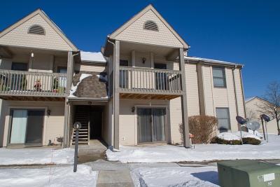 Single Family Home For Sale: 3602 Timberbridge Drive