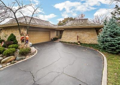 Schererville Single Family Home For Sale: 234 Inverness Lane