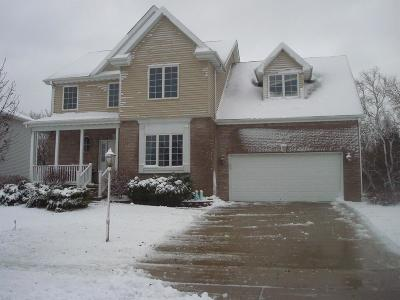 Schererville Single Family Home For Sale: 1137 Bemis Heights Avenue