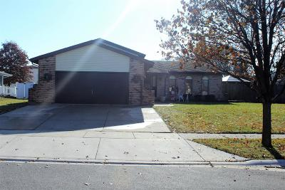 Dyer Single Family Home For Sale: 500 Scotty Lane
