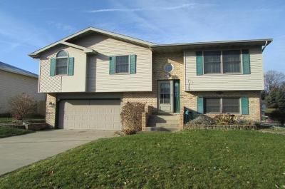 Single Family Home For Sale: 2228 Crocus Street