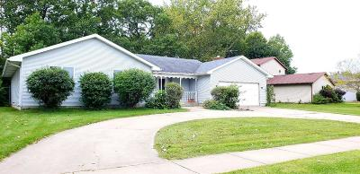 Schererville Single Family Home For Sale: 1107 Woodhollow Drive