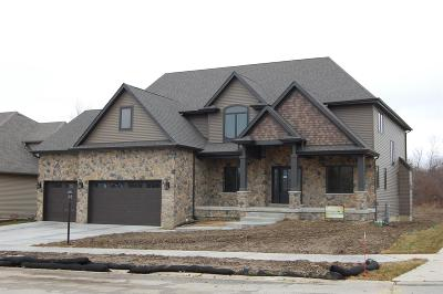 Schererville Single Family Home For Sale: 7310 Trails End Avenue