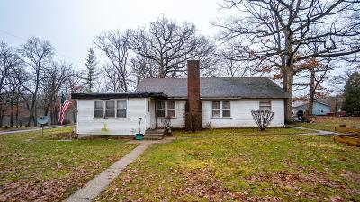Cedar Lake Single Family Home For Sale: 9517 W 126th Place