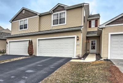 Lowell Single Family Home For Sale: 5314 Platinum Drive