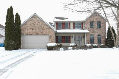 Schererville Single Family Home For Sale: 2205 Red River Drive