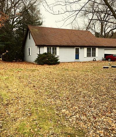 Demotte Single Family Home For Sale: 10326 N 500 E