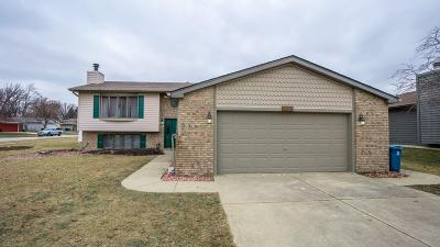 Schererville Single Family Home For Sale: 418 Teibel Drive