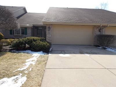Schererville Single Family Home For Sale: 517 Pinehurst Lane