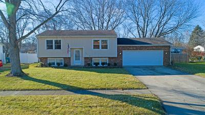 Lowell Single Family Home For Sale: 642 Blackwood Drive