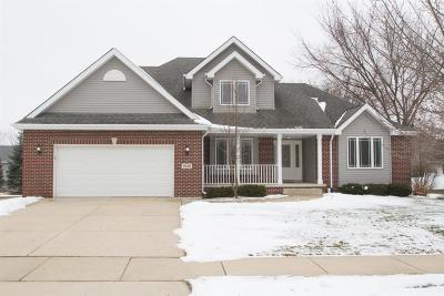 Dyer Single Family Home For Sale: 9639 Beall Street