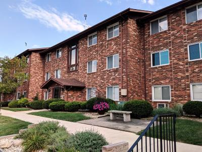 Cedar Lake Single Family Home For Sale: 8125 Lake Shore Drive