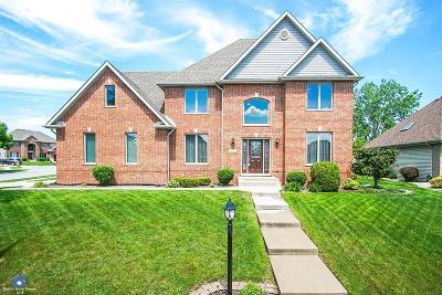 Schererville Single Family Home For Sale: 438 Hilbrich Drive