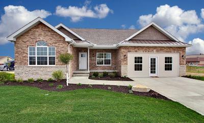Schererville Single Family Home For Sale: 2422 Winesap