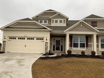 Cedar Lake Single Family Home For Sale: 8942 Finley Court