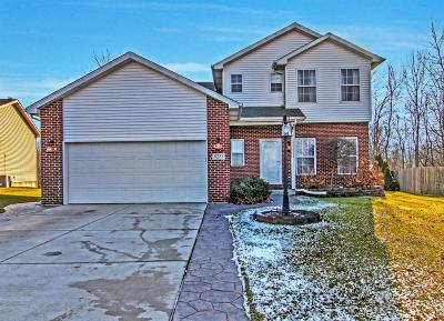 Single Family Home For Sale: 8231 E 124th Lane