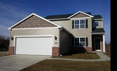 Lowell Single Family Home For Sale: 8568 Mayflower Drive