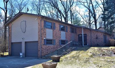 Laporte, La Porte Single Family Home For Sale: 2601 N Jongkind Park Drive
