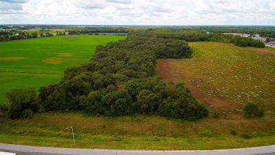 Demotte Residential Lots & Land For Sale: 1200 W
