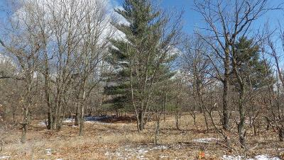 Demotte Residential Lots & Land For Sale: 10117 Rustic Drive