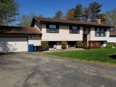 Single Family Home For Sale: 10486 N 470 E