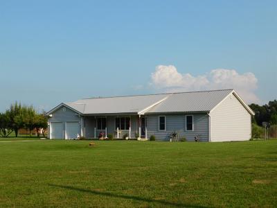 Single Family Home For Sale: 129 E 900 S