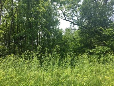 Residential Lots & Land For Sale: 11-acres 850 W